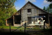picture of yesteryear  - Farm scene with rustic barn and old horse buggy in the evening light - JPG