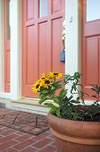 pic of front door  - daisies in a pot in front of a residential home for sale with realtors lock on the door handle - JPG