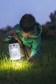 picture of boys night out  - a boy with a lantern looking for a loss in the grass at night - JPG