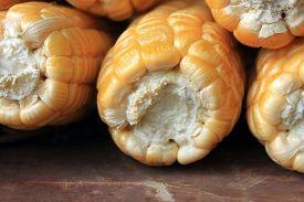 pic of corn cob close-up  - ripe corn on brown background close up - JPG