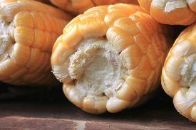 image of corn cob close-up  - ripe corn on brown background close up - JPG