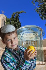 picture of sukkoth  - Cute seven year old boy in a white skullcap with the etrog - JPG