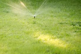 stock photo of fountain grass  - Closeup of one mechanical automatic irrigation system sprayed cold water as fountain on fresh green grass sunny day outdoor on natural background copyspace horizontal picture  - JPG