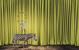 stock photo of juggling  - Young businesswoman standing on zebra and juggling with balls - JPG