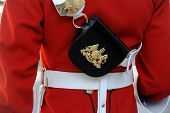 foto of trooper  - Detail of the cartridge pouch worn by a Royal Horseguards Trooper on Royal Duties in London - JPG