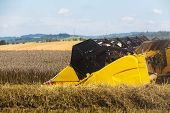 Summer Harvesting With Automatic Harvester poster