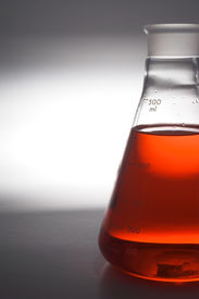 foto of pyrex  - A tempered glass beaker used in a research laboratory - JPG