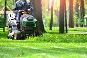 Green Grass Treeming With Lawn Mower In Sunny Day poster
