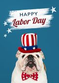 Happy labor day from a cute white English Bulldog puppy poster
