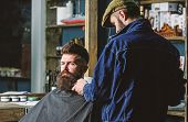 Hipster With Beard Covered With Cape Serving By Professional Barber In Stylish Barbershop. Grooming  poster
