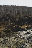 Autumn Mountain River Stream Landscape. Mountain River Autumn View. Autumn Mountain River Panorama.  poster