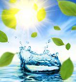 Постер, плакат: Капли воды
