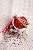 tandoori masala in bowl - spices