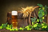image of raw materials  - glass of beer with raw material for beer production - JPG