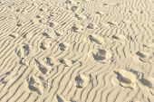stock photo of dauphin  - waves at the sandy beach in harmonic pattern with pattern of footsteps - JPG