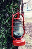 stock photo of kerosene lamp  - Kerosene lamp on tree - JPG