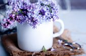 image of hazy  - Bouquet of purple lilac spring flowers with an open book and vintage hazy editing - JPG