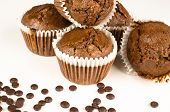 stock photo of chocolate muffin  - Freshly baked homemade chocolate muffins on white - JPG