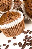 pic of chocolate muffin  - Freshly baked homemade chocolate muffins on white - JPG