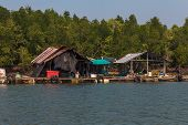 image of floating  - Float fishing village on tropical river with trees on background in Krabi province of Thailand - JPG
