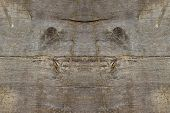picture of creatures  - Wood texture with creature spirit face smile of nature in board - JPG