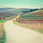 picture of dirt road  - Dirt Road Leading to the Farmhouse in Spain Retro Effect - JPG