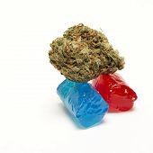 picture of cannabis  - Marijuana and Cannabis Bud - JPG