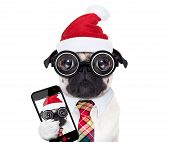 Dog Office Worker On Christmas Holidays poster