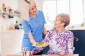 Female Care Assistant Serving Meal To Senior Woman Seated In Wheelchair At Table poster