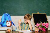 Little Boy Eat Apple At Lunch Break. Small Boy Have School Lunch In Classroom. Tasty Food. School Lu poster