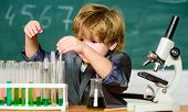 Gifted Child And Wunderkind. Kid Study Chemistry School. School Education. Explore Biological Molecu poster