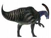 Parasaurolophus Dinosaur Tail 3d Illustration - Parasaurolophus With A Cranial Crest Was A Herbivoro poster