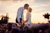 Bridal couple after the wedding kissing during sunset on a meadow in rural environment poster
