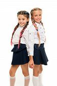 Appropriate Hairstyle. Girls Long Braids. Fashion Trend. It Is Awesome Dye Hair Fun Colors. Keep Hai poster