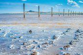 Crystals Of Natural Salt In The Lifeless Hot Terrain On The Salt Lake Baskunchak. poster