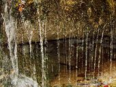 image of jericho  - a small waterfall taken at less than two feet distance at walls of jericho in north alabama - JPG