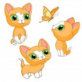 Kittens Kittens Redhead Pet Isolated Illustration Vector poster