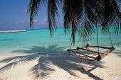 picture of tropical island  - tropical ocean  - JPG
