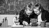 Basic Knowledge Of Chemistry. Pupils Cute Girls Use Test Tubes With Liquids. Chemistry Experiment Co poster