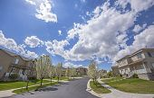 Paved Road And Homes On A Neighborhood Under Cloudy Blue Sky On A Sunny Day poster