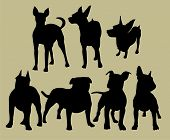 stock photo of bull-mastiff  - the set of silhouette of different dogs - JPG