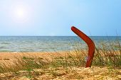 stock photo of boomerang  - Landscape with boomerang on overgrown sandy beach against blue sea and sky - JPG