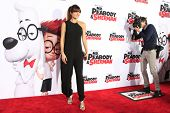 LOS ANGELES - MAR 5: Lake Bell at the premiere of 'Mr. Peabody & Sherman' at Regency Village Theater