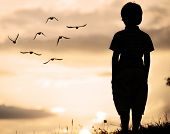 image of grass bird  - Alone kid standing on field looking far away on birds flock - JPG