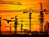 picture of derrick  - Cranes on a sunset background - JPG