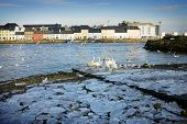 foto of claddagh  - broken ice on the bank of Corrib river and swans in Claddah - JPG