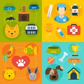 stock photo of veterinary  - Veterinary pet food and health care infographic flat isolated vector illustration - JPG