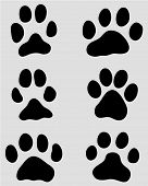 foto of hound dog  - Black print of paw of dogs and cats - JPG