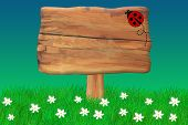 stock photo of craw  - Wooden Sign With a Ladybug Crawing On It - JPG
