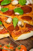 picture of salami  - Rustic pizza with salami mozzarella and spinach on a clay plate - JPG